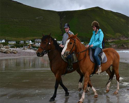 Burkes horse trekking Kerry